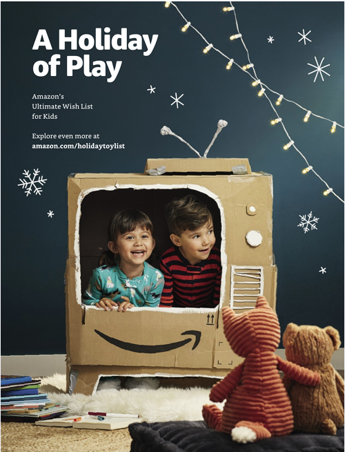Amazon_ToyCover